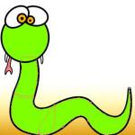Cách xử lý khi bị rắn cắn